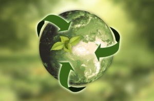 Understanding Green Marketing: What Businesses Need to Know